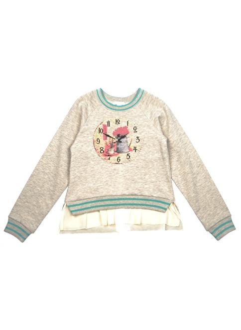 Panço Sweatshirt Gri